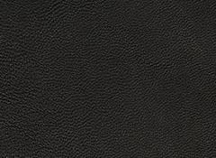 SWF358-FY50 BLACK JP