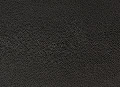 SWF366-180 BLACK  JP